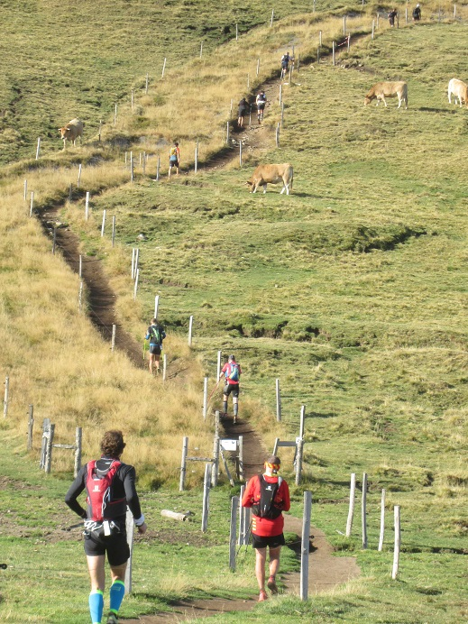 trail sancy 60km 2016 buronducol